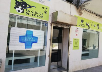 veterinario-estadio-cadiz4